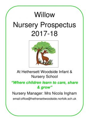 thumbnail of Willow Nursery prospectus